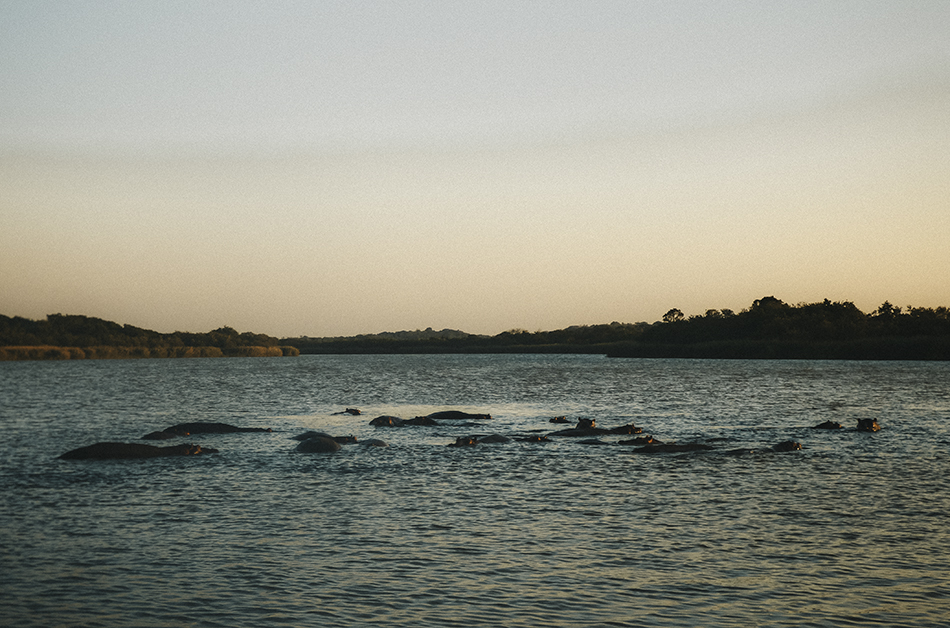 Enjoying an evening cruise searching for hippos in St Lucia, South-Africa