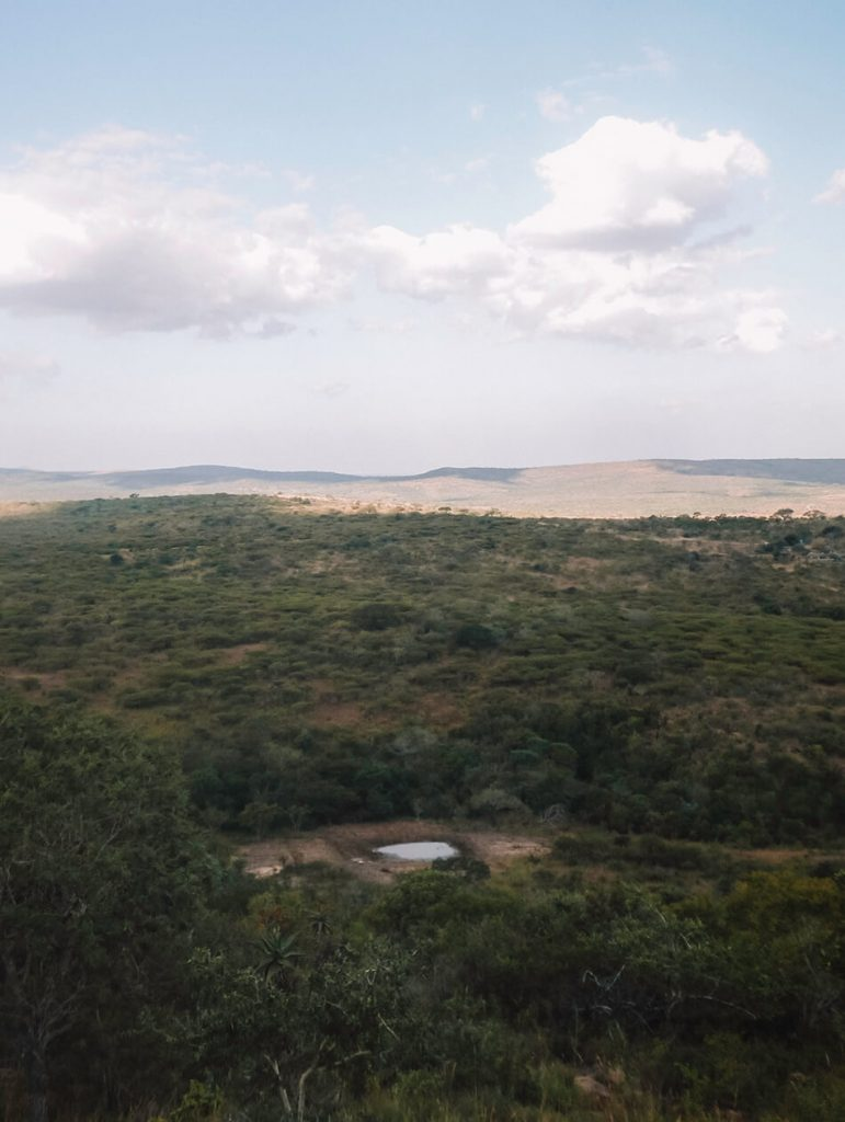 Gorgeous lush landscape of Hluhluwe Game Park, South-Africa