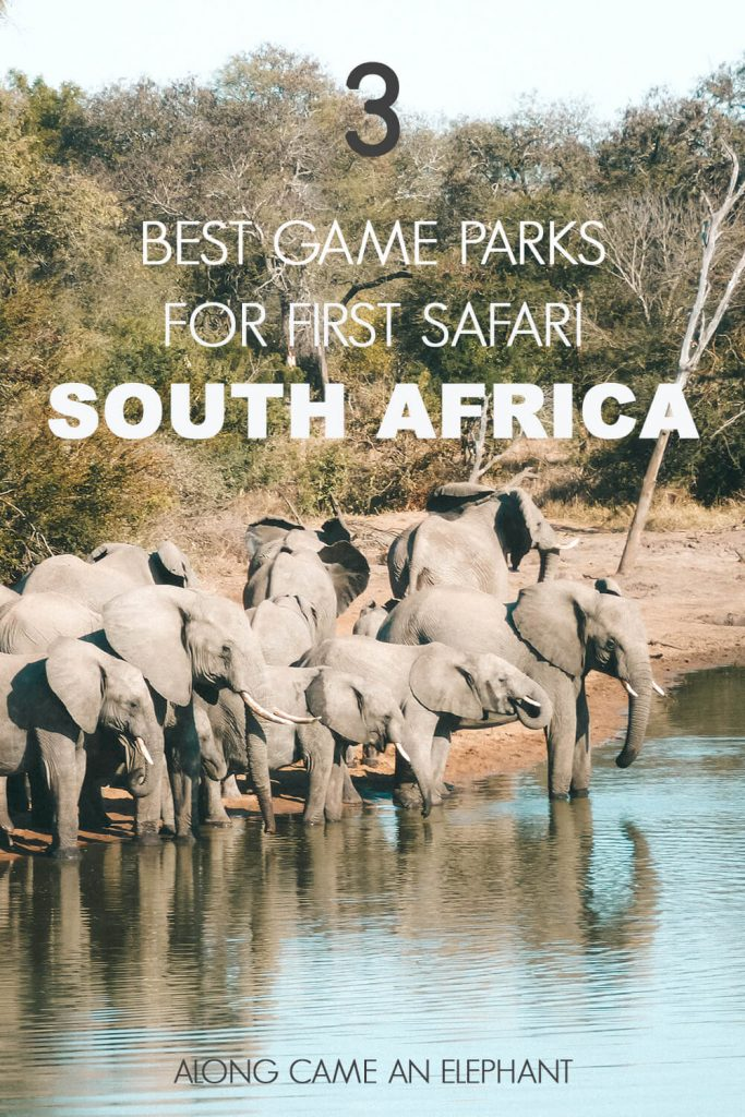 The 3 best South-African Game Parks for your first safari