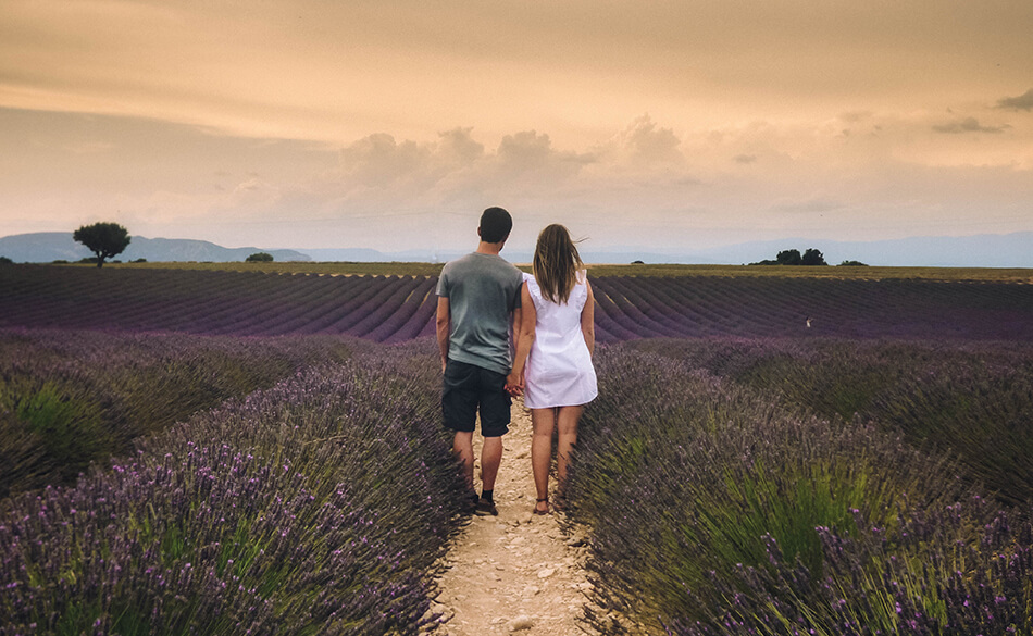 Strolling through beautiful purple fields of Lavender in the Provence, France