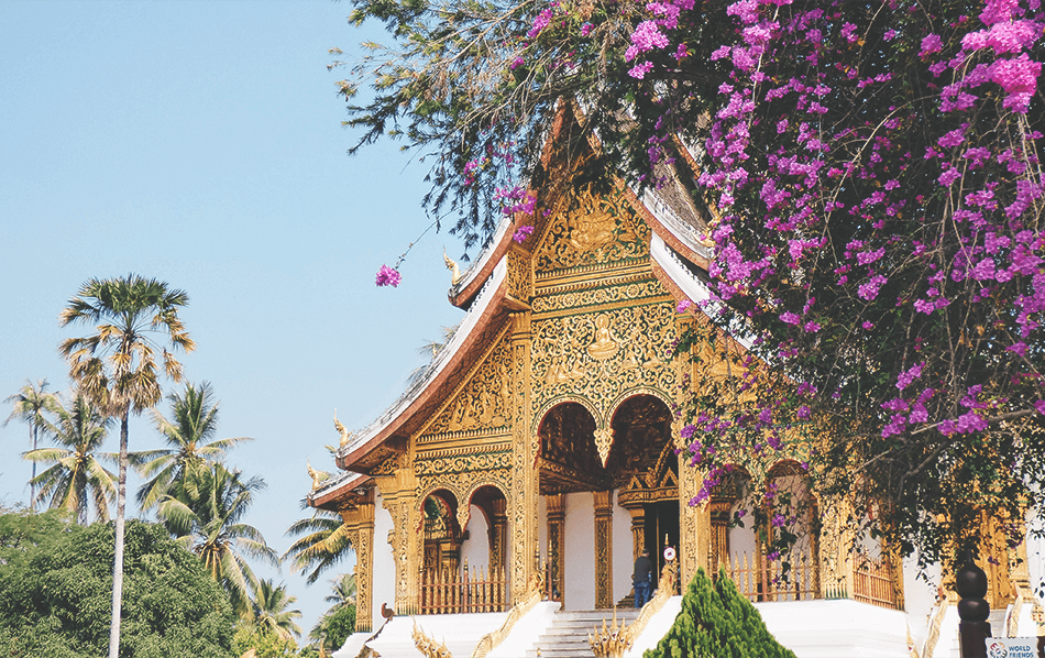 Golden temples at the Royal Palace in Luang Prabang