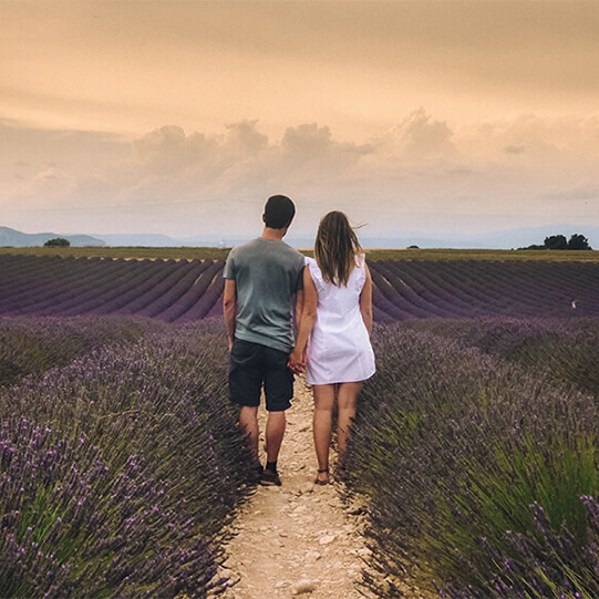 Enjoying a spectacular sunset in a field of purple lavender in the Provence, France