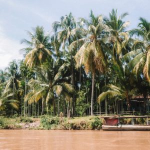 Tropical vibes in 4000 Islands, on the boarder with Cambodia
