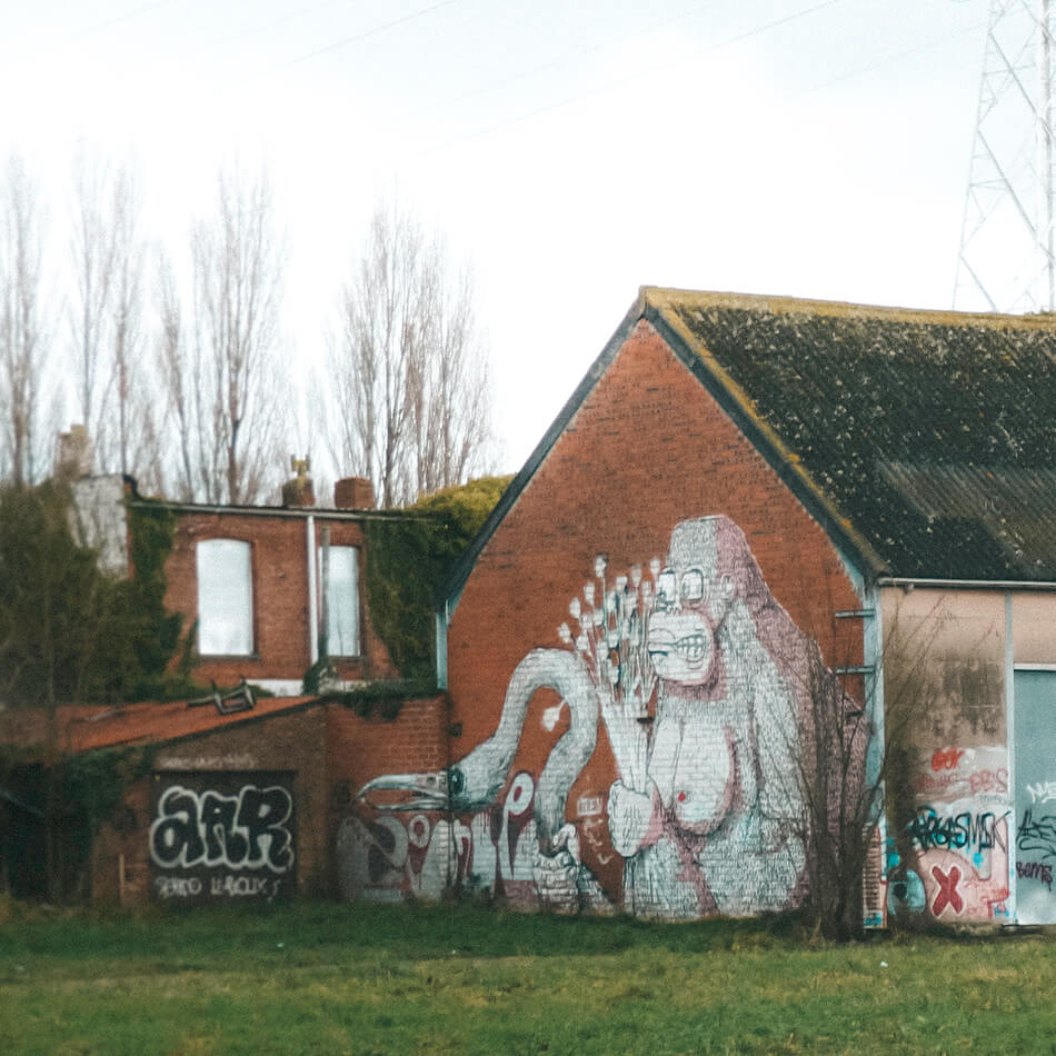 Graffiti artists are living in paradise in Doel