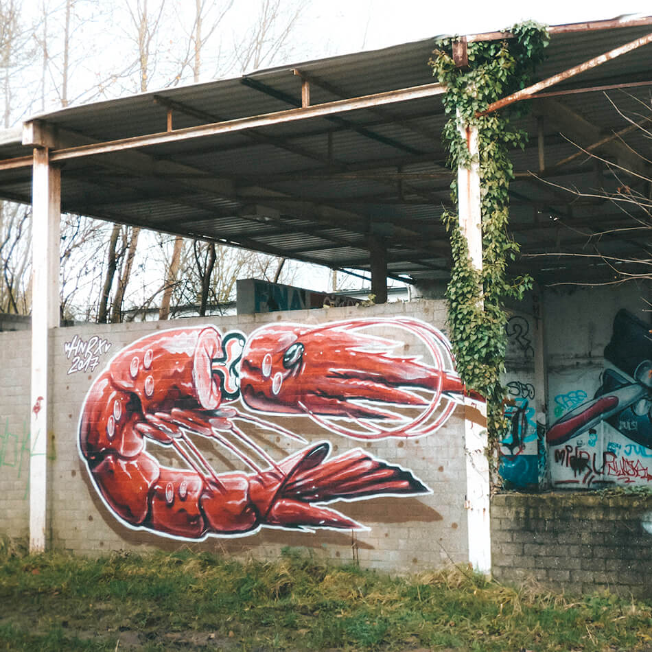 Sometimes whole murals steel the show or you can find smaller hidden gems while exploring Doel's street art