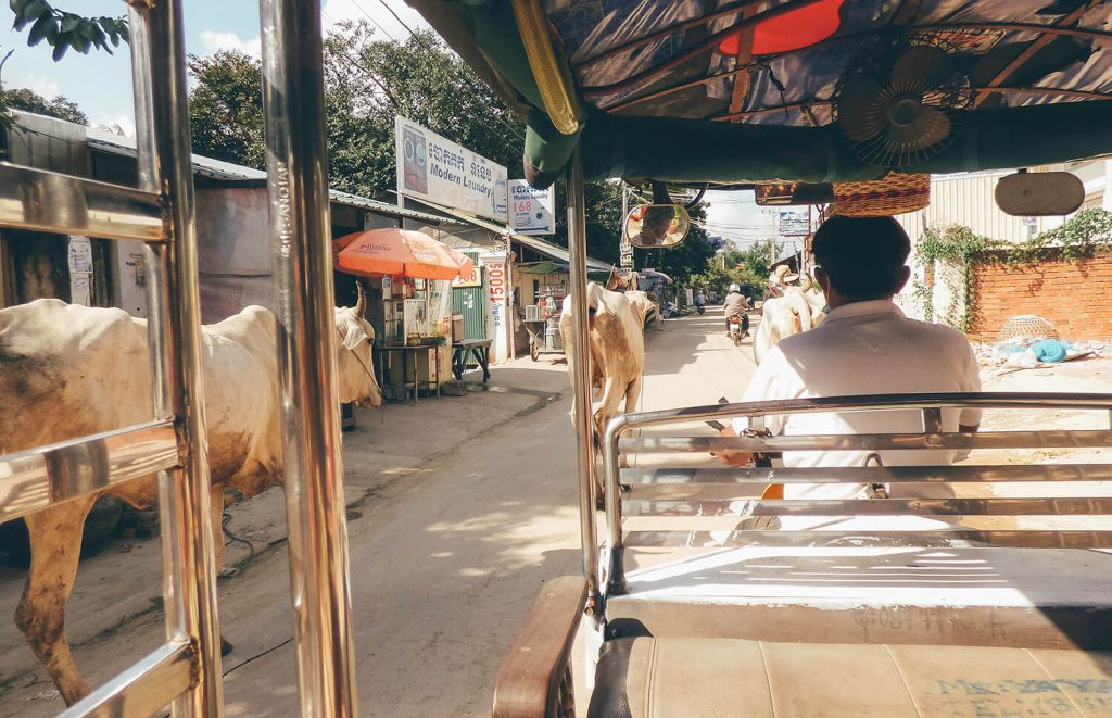 Taking a tuk-tuk to the S21 museum and Killing Fields