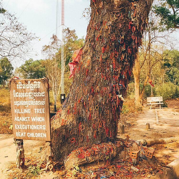 The killing tree against which young children were beaten to death
