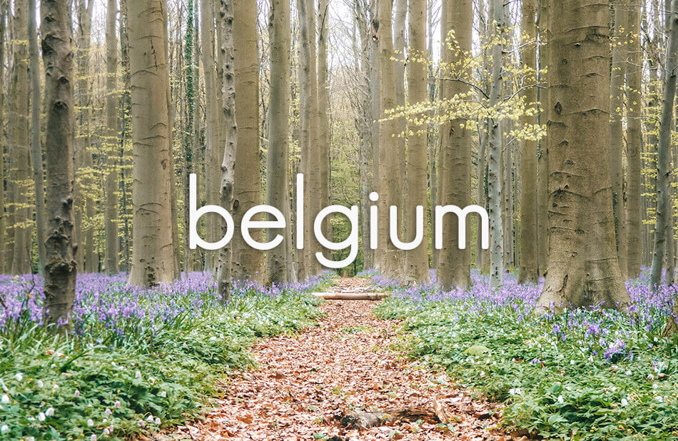 All our post about Belgium