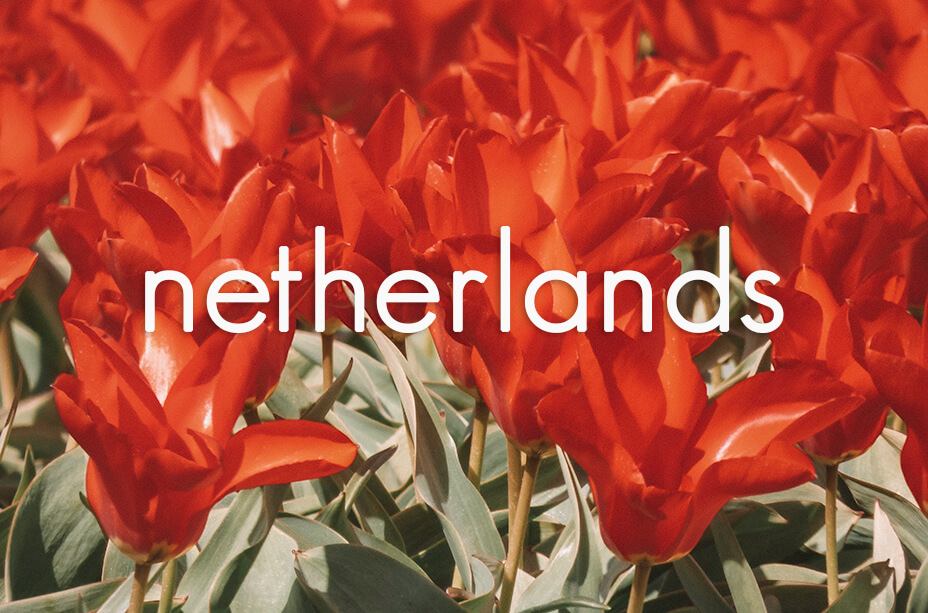 All our post about The Netherlands