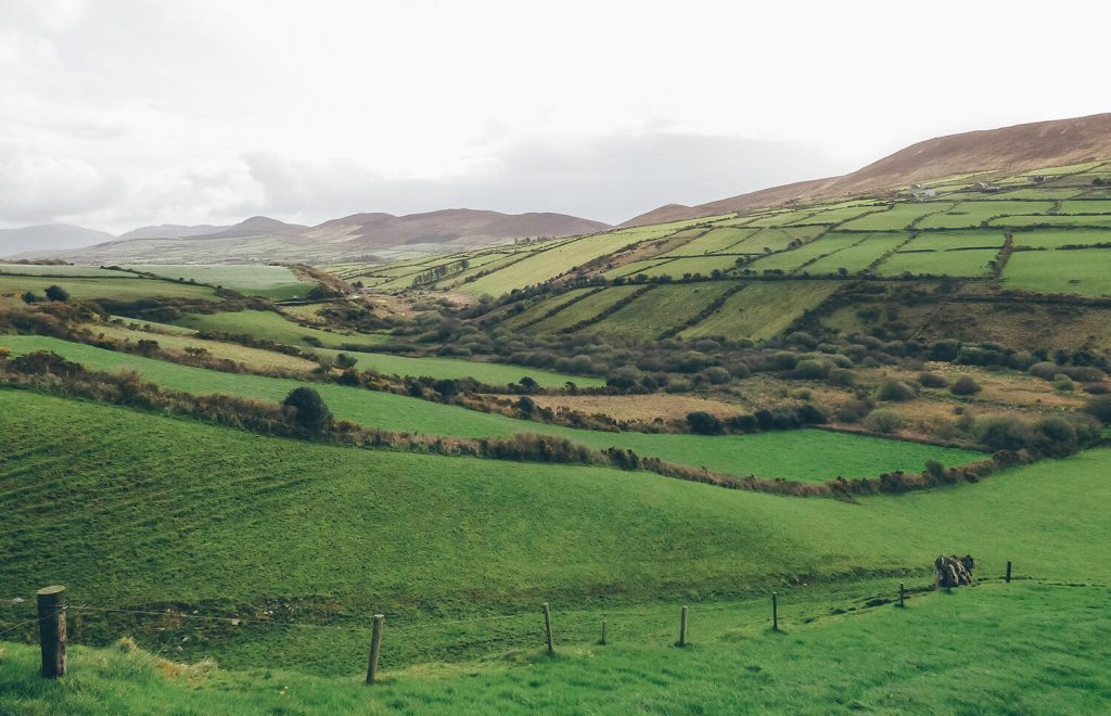Views while driving in Ireland