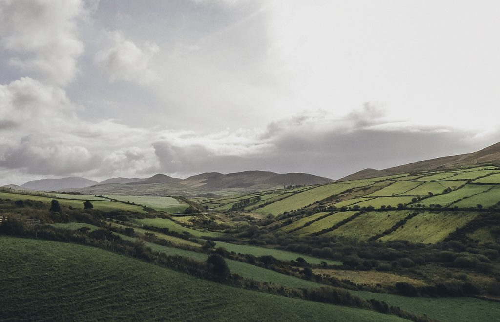 Green patchwork fields on the Dingle Peninsula