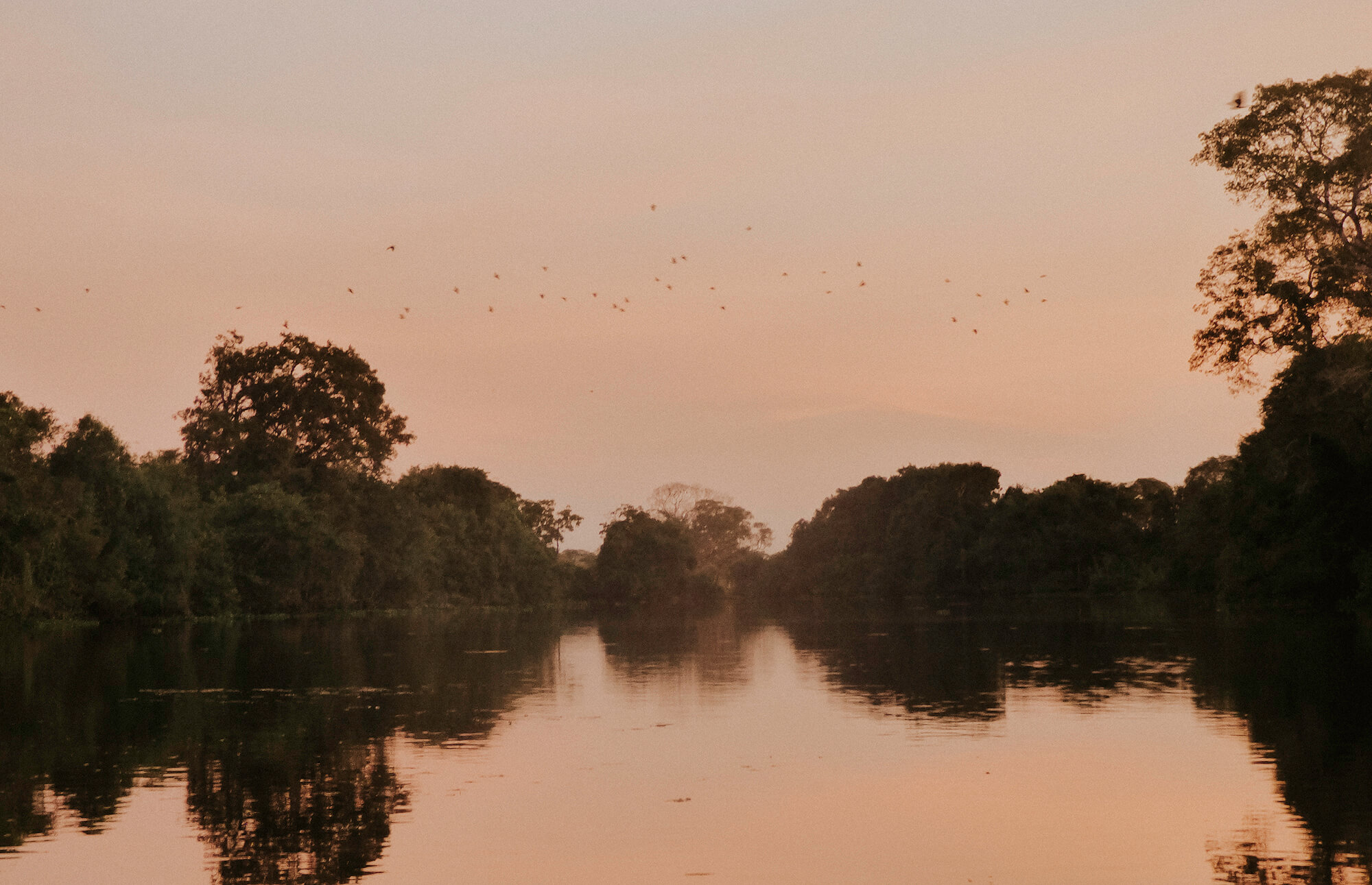 Kayaking the Pantanal during our 3 week trip through Brazil