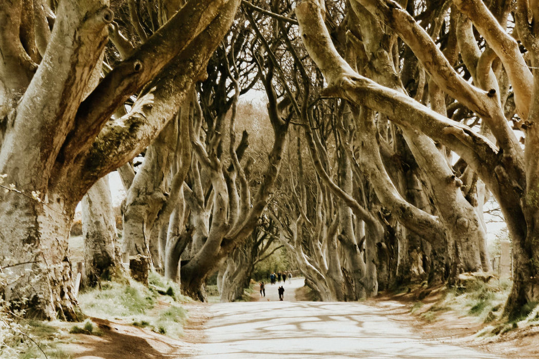Game Of Thrones: The Best Filming Locations In Northern Ireland