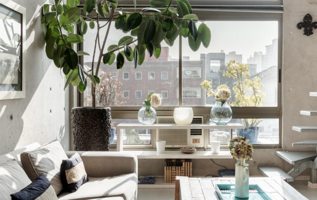 Luminous Airbnb in Providencia
