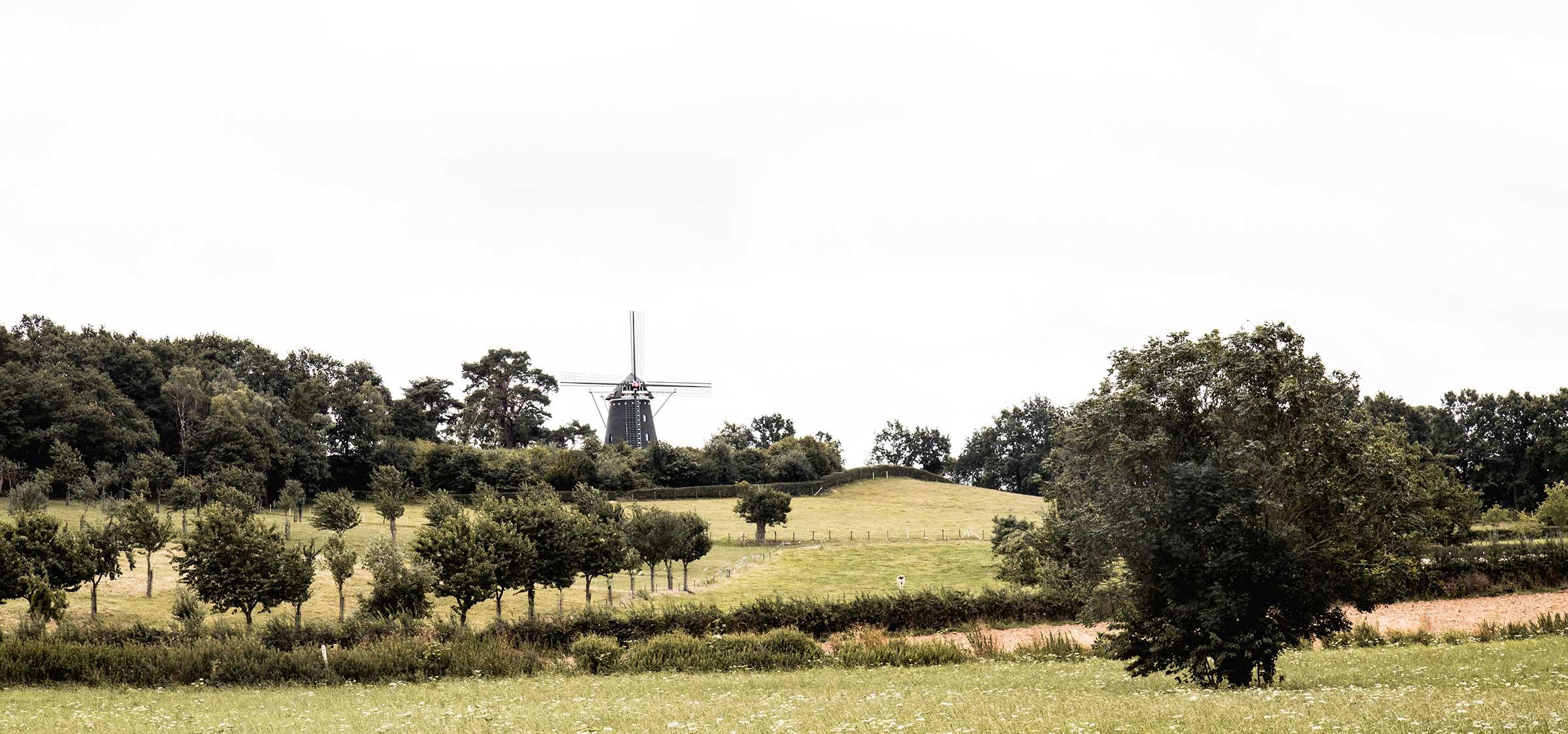 Wanderlust: The Netherlands Travel Tips