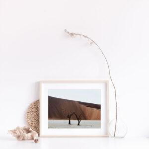 Gift Boxed Deadvlei Photographic Print