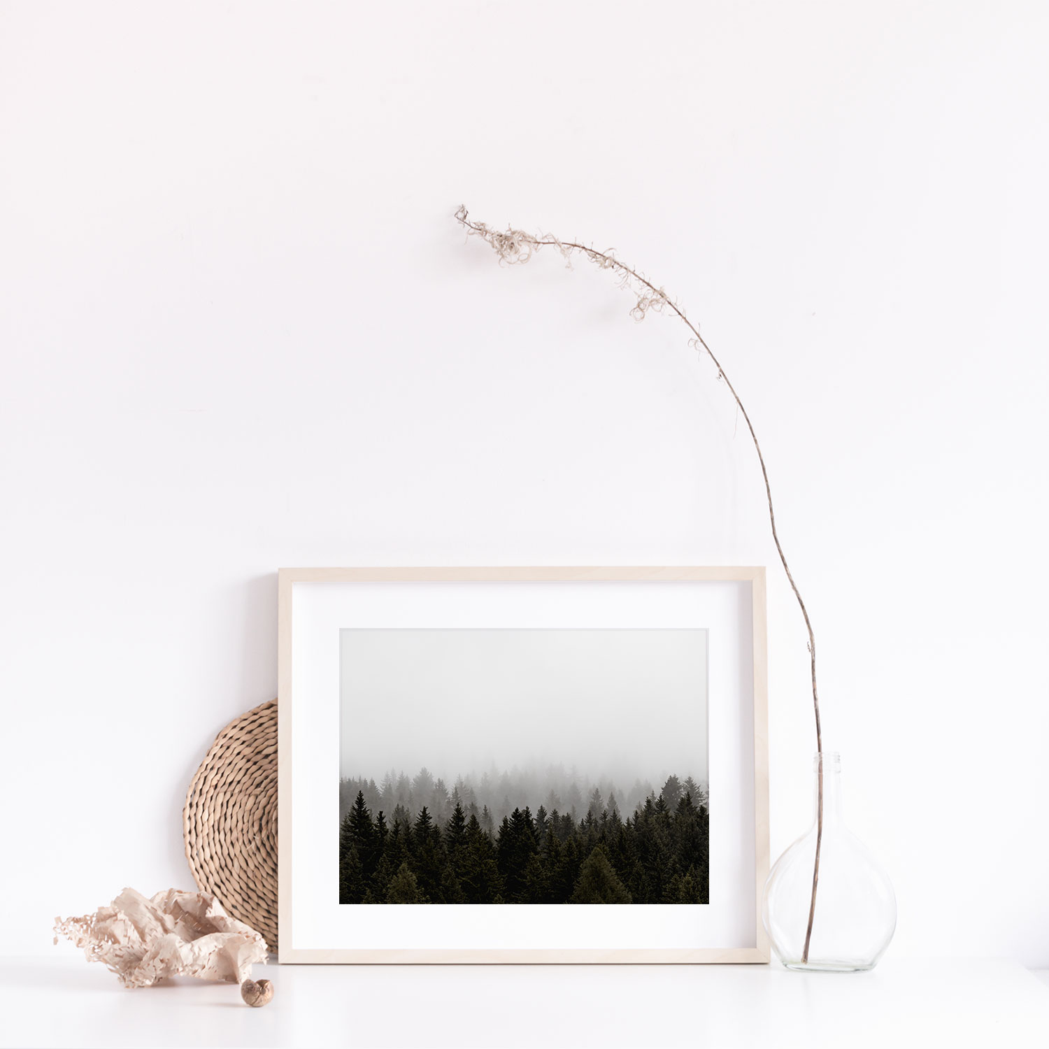 Gift Boxed Pine Trees Photographic Print