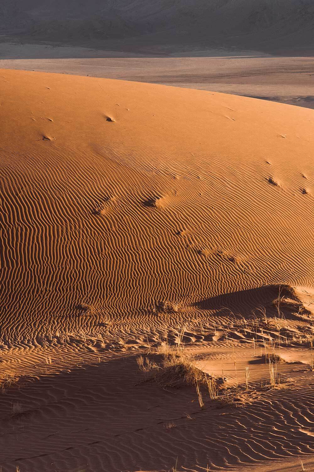 Ripples in the sand, Namibia off the beaten track in the dune belt