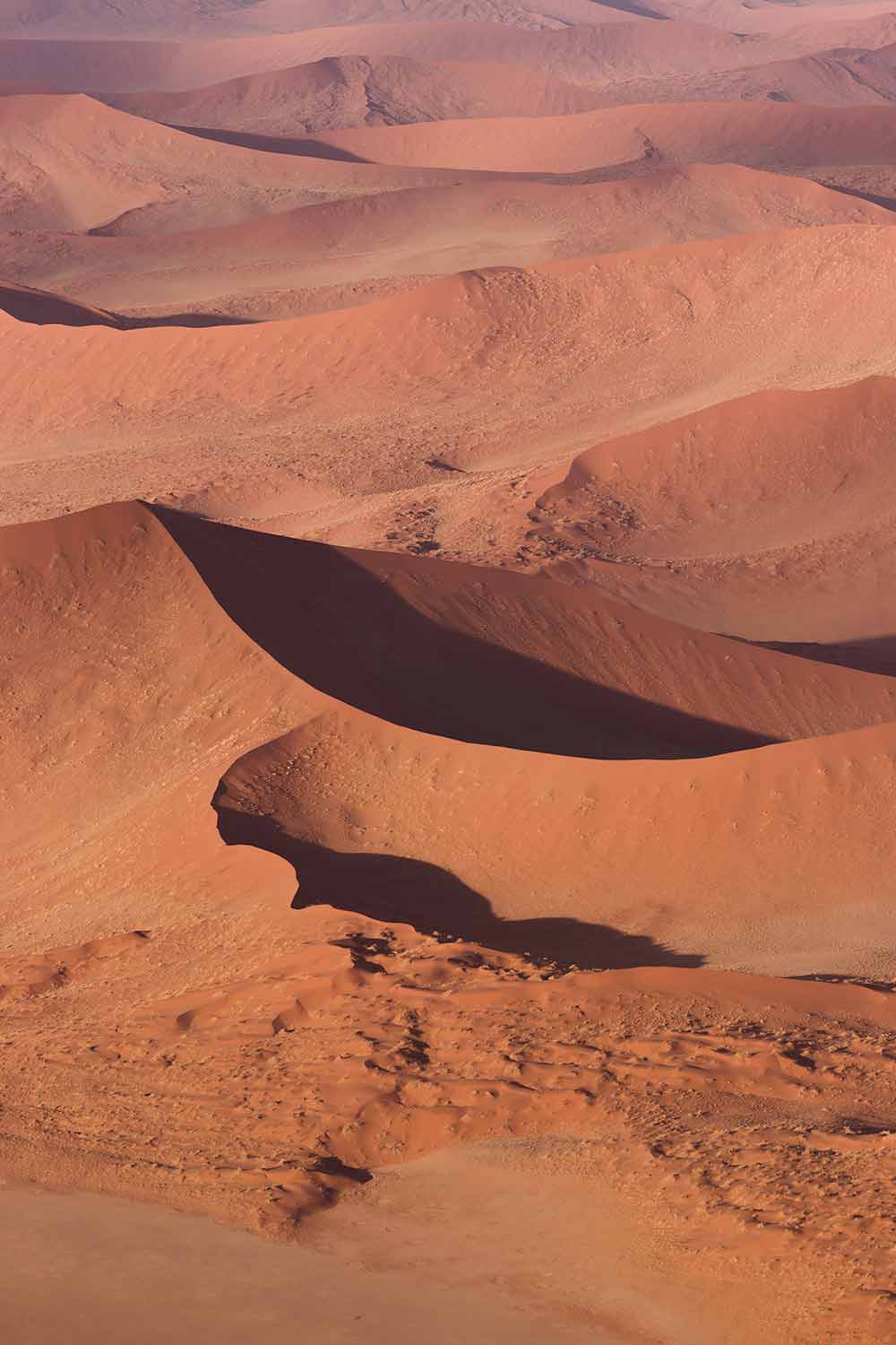 Endless dune ridges to be seen while hot air ballooning in Sossusvlei