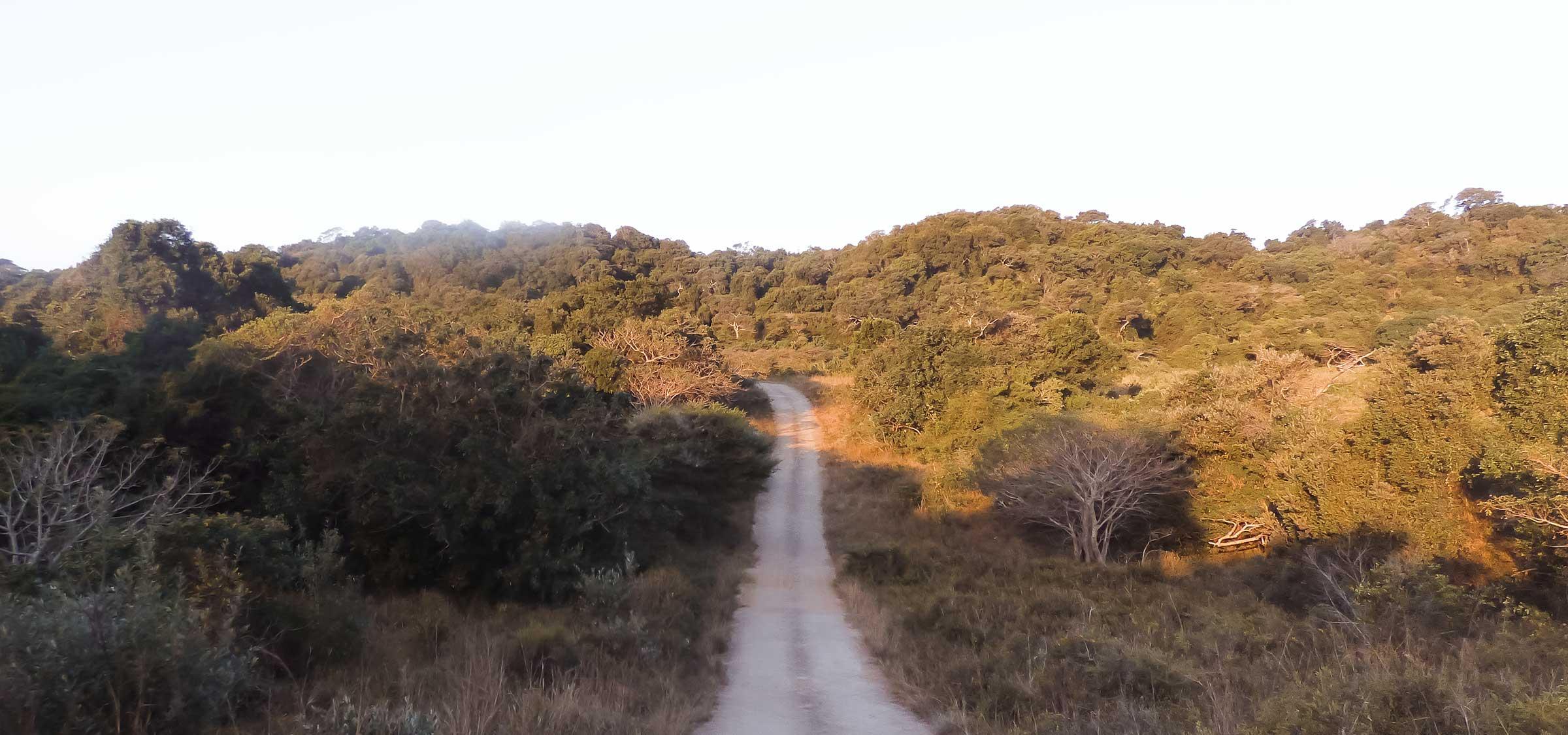 Wanderlust: Brazil Travel Tipsderlust: Zambia Travel Tips