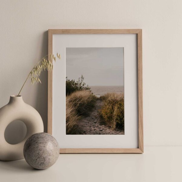 Rustic Beach path Gallery Print Set