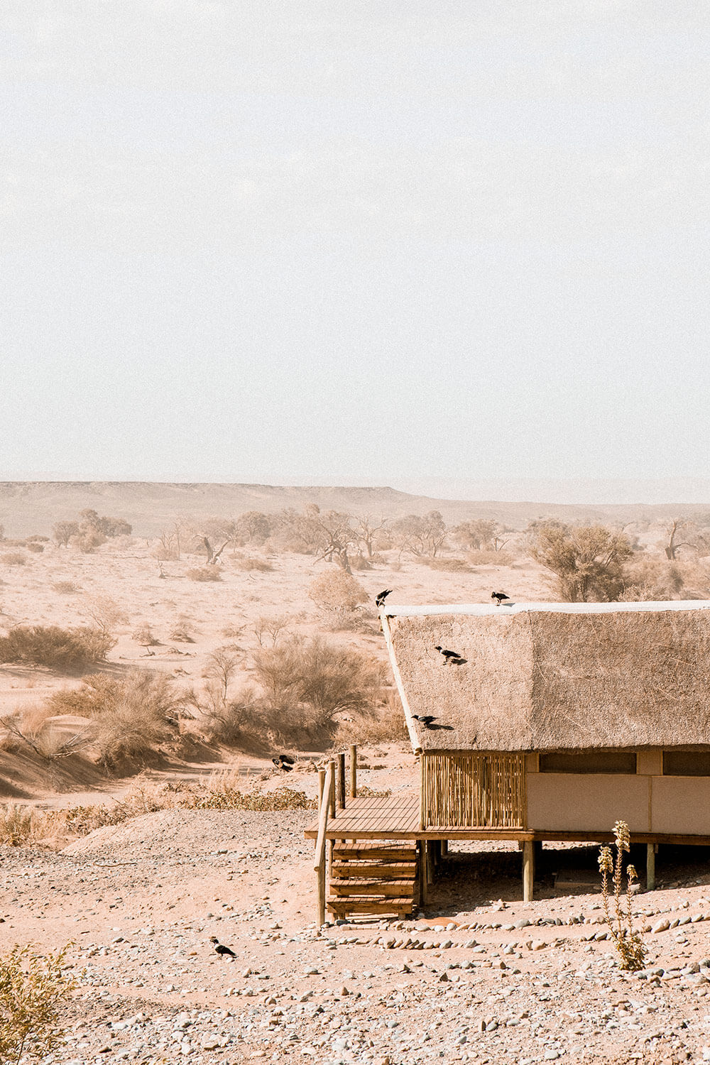 A 'Kulala' or individual accommodation of the Kulala Desert Lodge