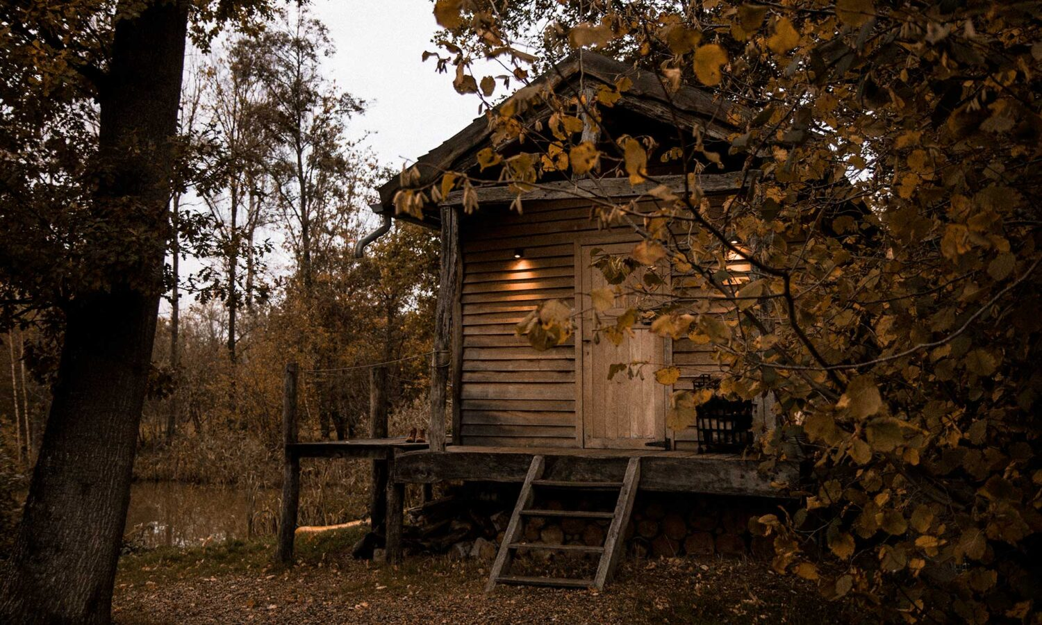 Rustic feels when approaching the tiny house