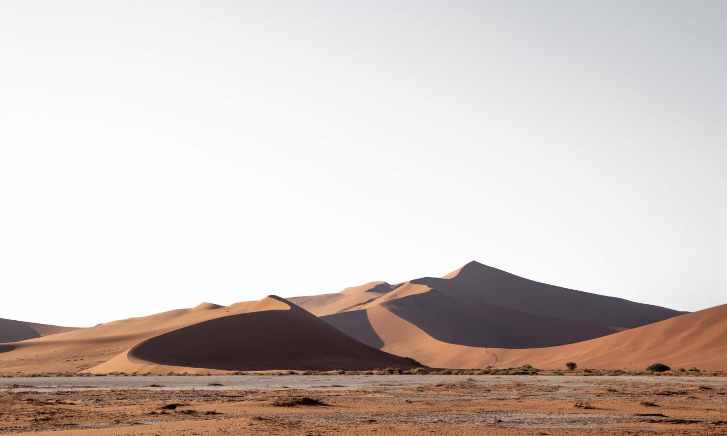 Admiring Big Daddy dune on our 2 days in Sossuvlei