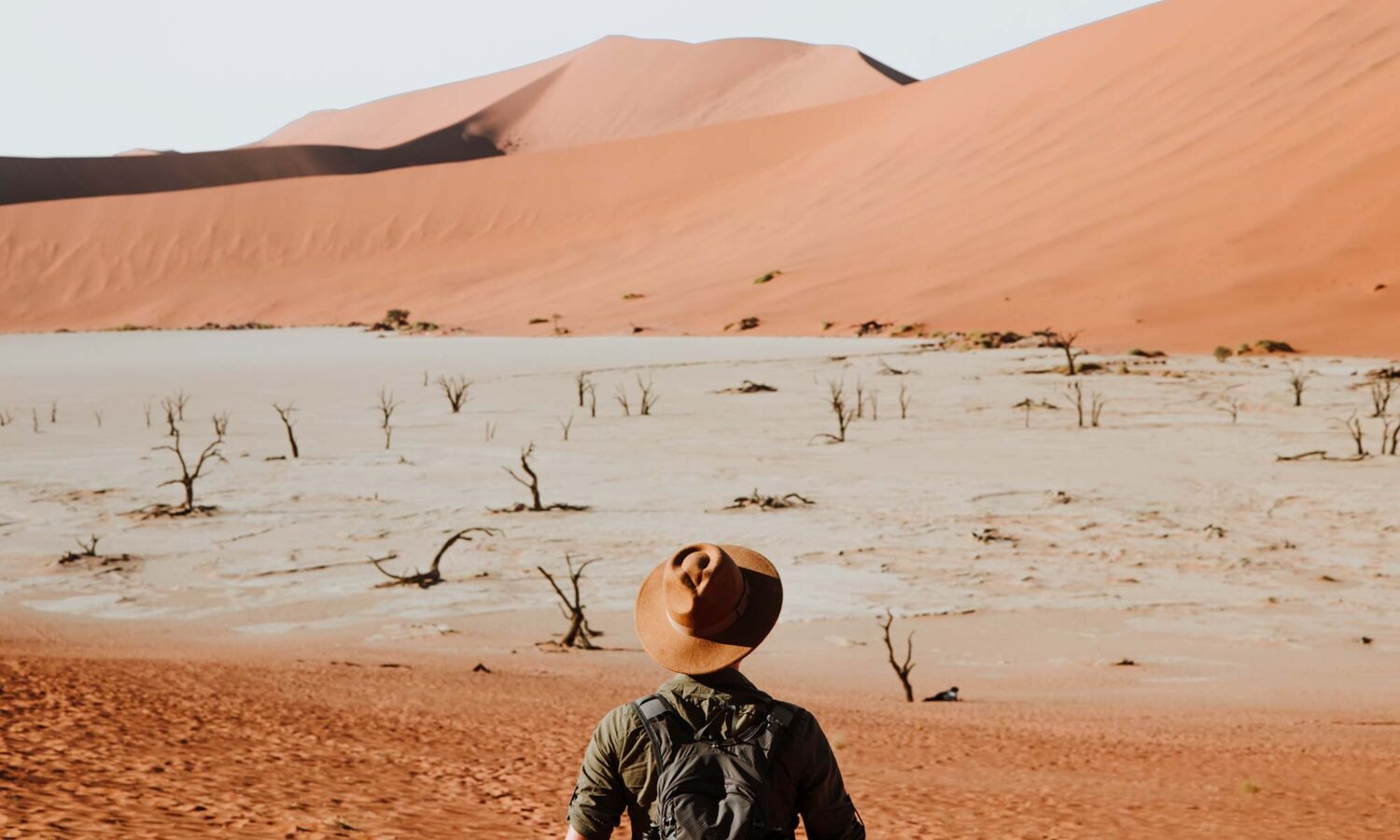 Sossusvlei activities among the sand dunes: exploring Deadvlei