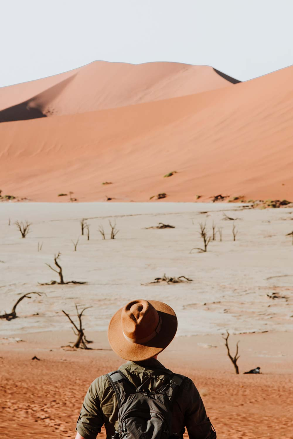One of Sossusvlei's major attractions: Deadvlei