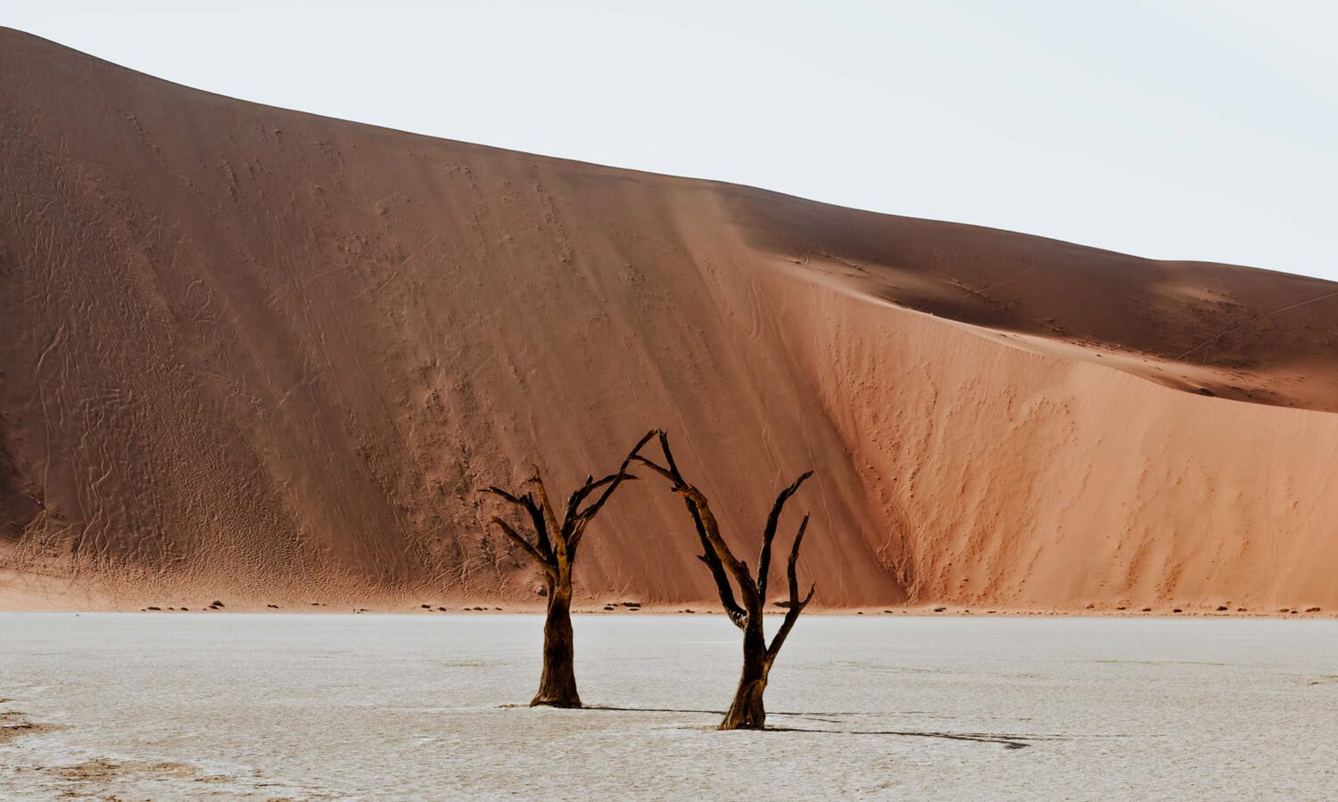 10 things to do in Sossusvlei when you have two days in Sossuvlei