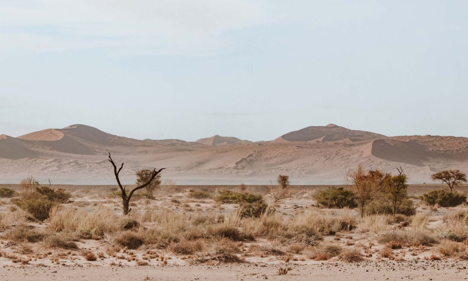 Gorgeous desert views on our two days in Sossusvlei.