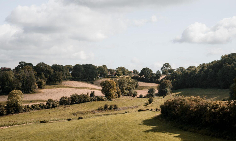 Panorama's langs de mooiste wandeling van Vlaanderen