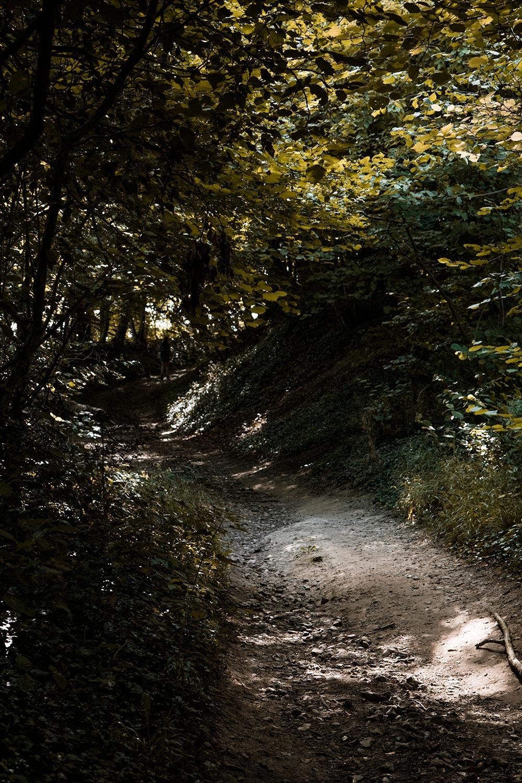 Afwisselende landschappen tijdens de wandelingen Voerstreek