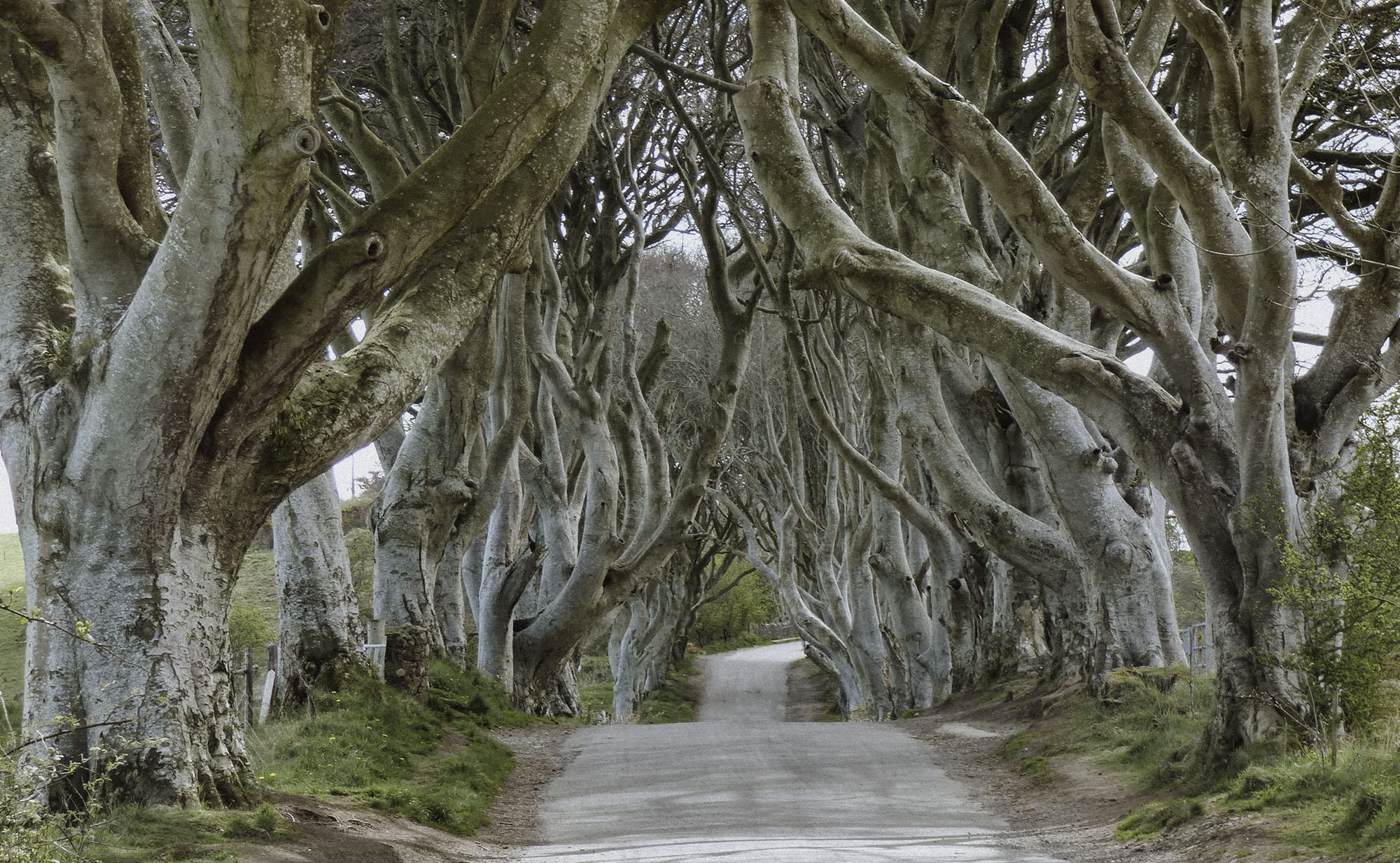 This Ireland 7 day Itinerary includes stops along the most famous Game Of Thrones film locations